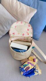 Mini Demilune Backpack