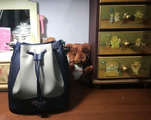 Mini Ella Bucket Bag photo review
